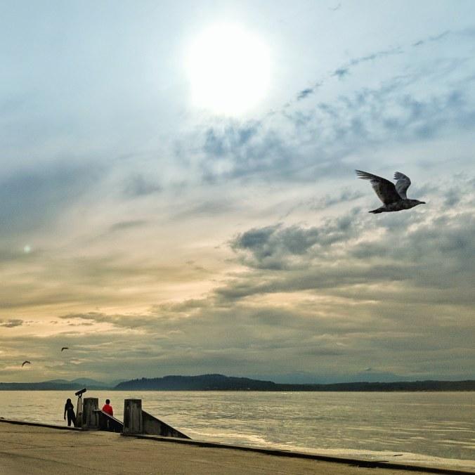 ©Terri-Nakamura_Alki-Beach-IG-20180627_232201_127